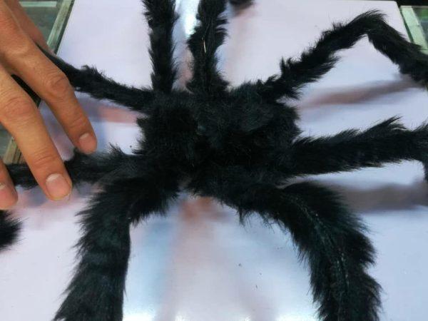 خرید عمده انواع لوازم هالووین و لوازم شوخی انواع عنکبوت