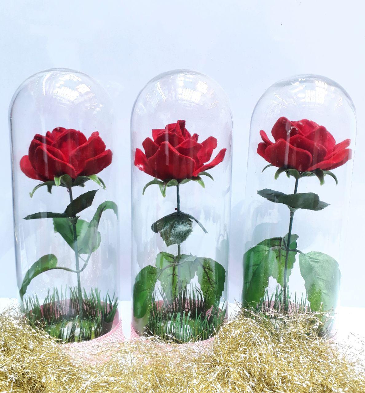 پخش عمده لوازم کادویی و تزیینی تک گل در استوانه شیشه ایی